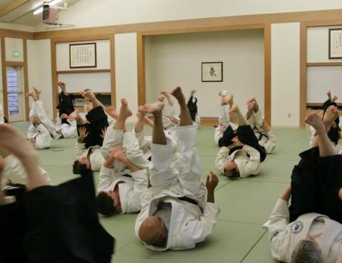 Aikido Spring Camp 2015