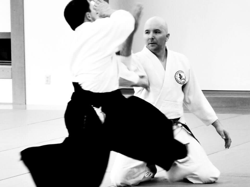 West Linn Ki Aikido Martial Arts