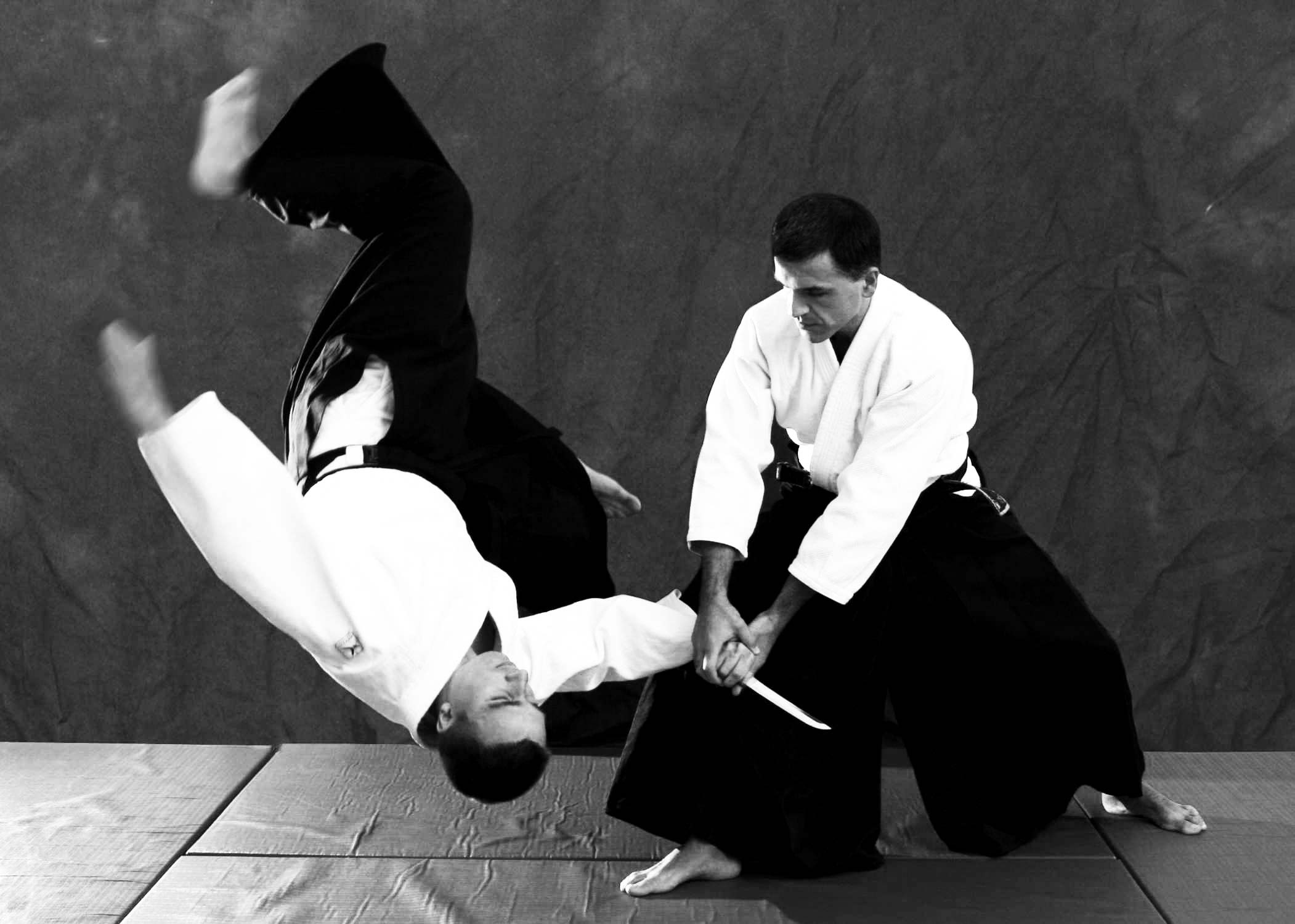 aikido_throw-sm
