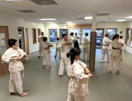 West Linn Ki Aikido, Martial Arts