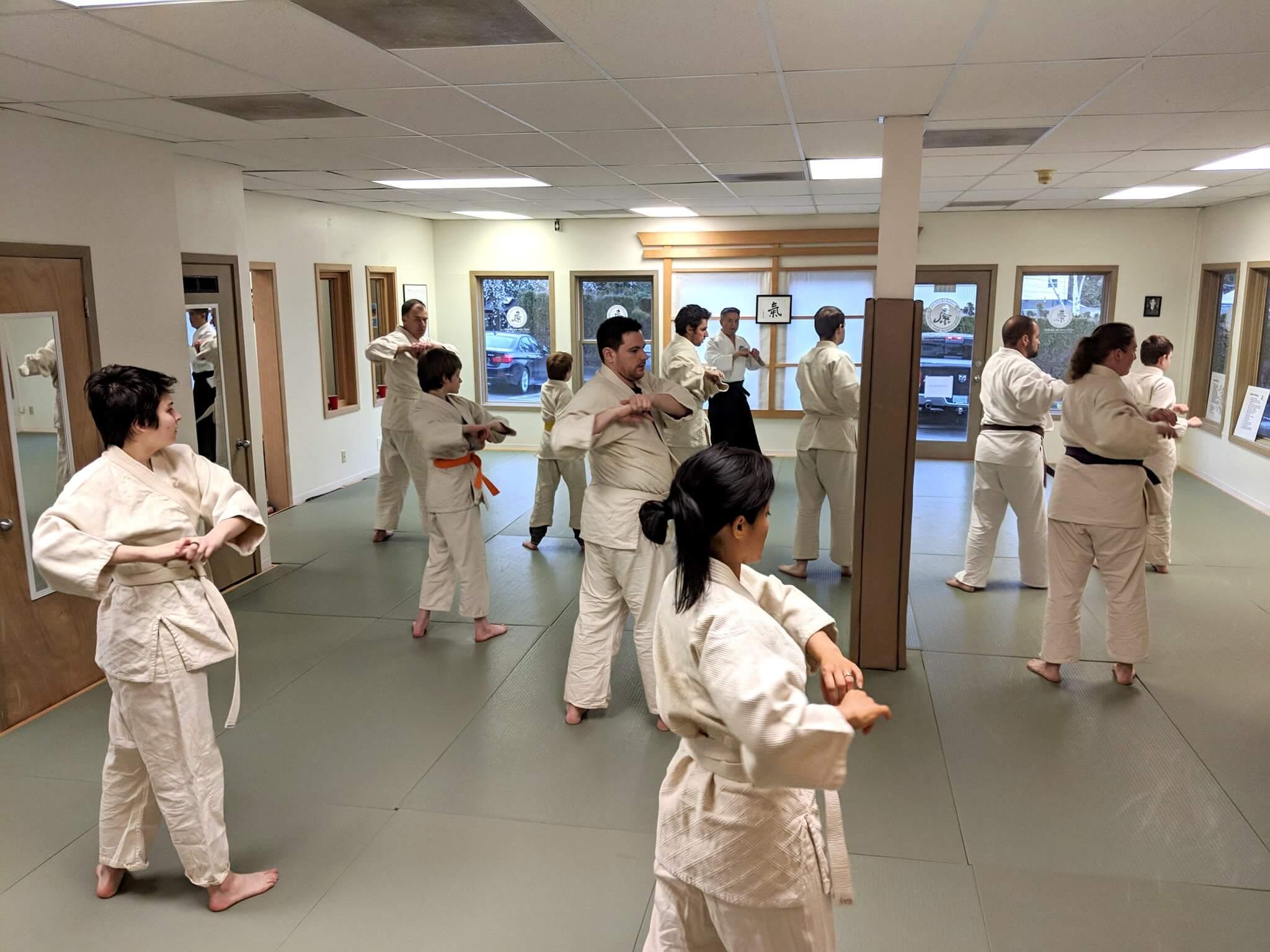 West Linn Ki Aikido, Martial Arts